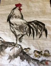 Rooster w-chicks