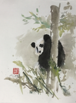 Shy Panda by Steve Grant