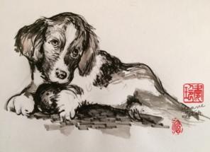 Dog-Ileane Tater 2017